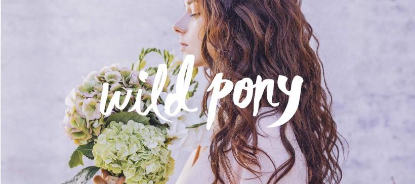 Wild Pony, lo nuevo de Compañía Fantástica